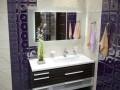 ארון לחדר אמבטיה פורניר משולב זכוכית
